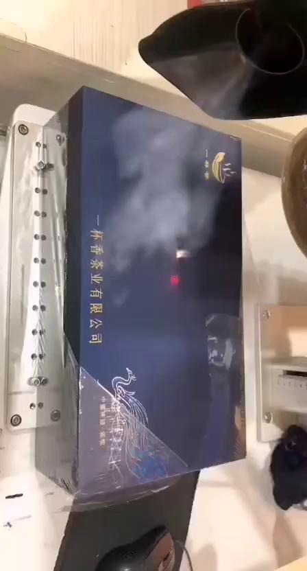 C100E烟雾净化器